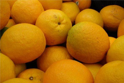 EO sladke pomaranče 15g, ekološko-156