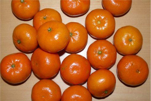 EO mandarine, ekološko-467